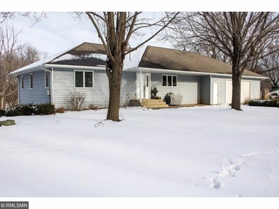 61386 235th Street, Jamestown Twp, MN 56063 - #: 4903952