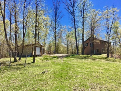49245 397th Place, Palisade, MN 56469 - MLS#: 4906550