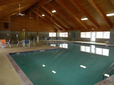 1321 Lake Drive W UNIT 221, Chanhassen, MN 55317 - MLS#: 4911231