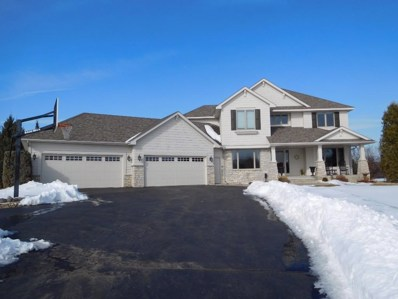 6220 Pagenkopf Road, Independence, MN 55359 - MLS#: 4915325