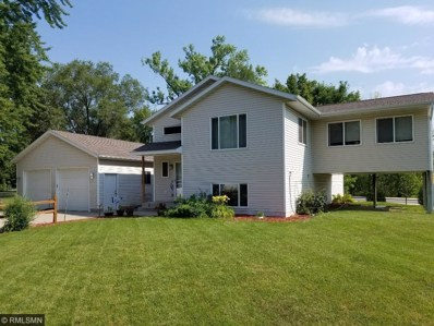 100 9th Avenue N, Sauk Rapids, MN 56379 - #: 4933088