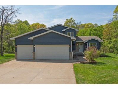 14775 34th Street, Clear Lake, MN 55319 - MLS#: 4955924