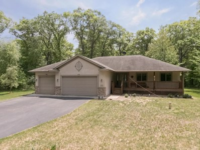 11545 306th Avenue, Princeton, MN 55371 - MLS#: 4959577