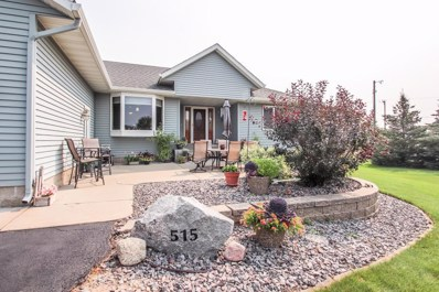515 Pelican Lake Court, Avon, MN 56310 - #: 4966670