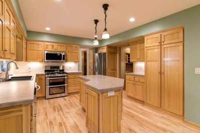 16119 Vale Street NW, Andover, MN 55304 - MLS#: 4969317
