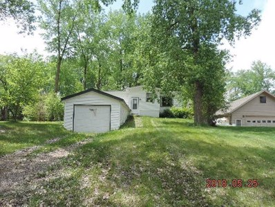19627 612th Avenue, Litchfield, MN 55355 - MLS#: 4974388