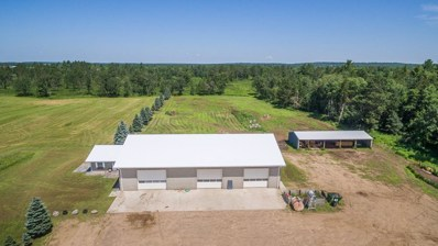 4530 116th Street SW, Pillager, MN 56473 - MLS#: 4975653