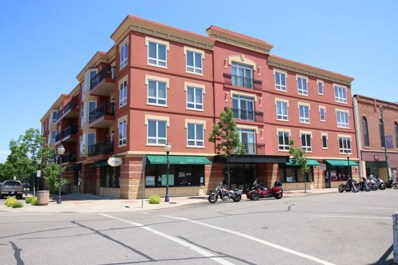 101 S Washington Street UNIT 208, Lake City, MN 55041 - MLS#: 4984547