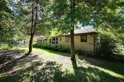 446 172nd Avenue NE, Ham Lake, MN 55304 - MLS#: 4987492