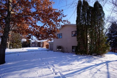 505 Nelson Court, Northfield, MN 55057 - MLS#: 4992893