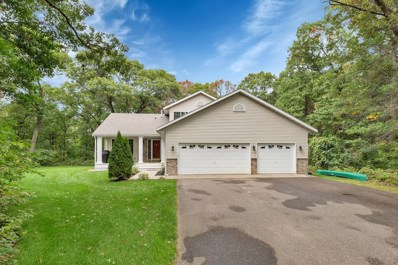 14666 31st Street, Clear Lake, MN 55319 - MLS#: 4993179