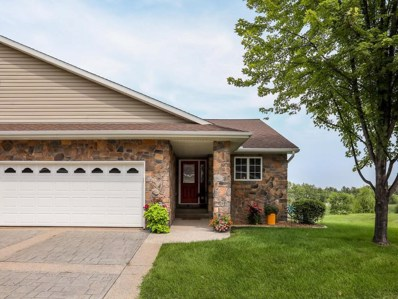 215 Orchard Court, Howard Lake, MN 55349 - MLS#: 4993214
