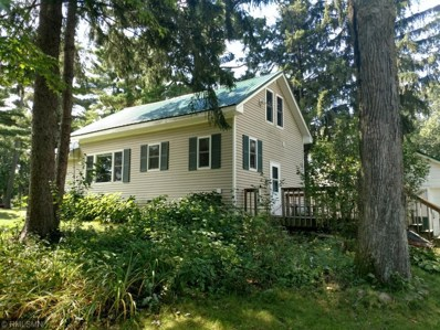 312 1st Avenue W, Balsam Lake, WI 54810 - MLS#: 4996867