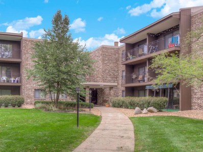 4100 Parklawn Avenue UNIT 311, Edina, MN 55435 - MLS#: 5001946