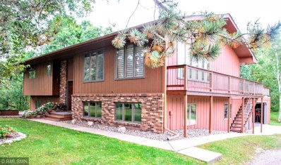 4835 County Road 16, Pequot Lakes, MN 56472 - #: 5005087