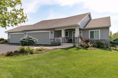 19280 Castle Court, Empire Twp, MN 55024 - MLS#: 5005332