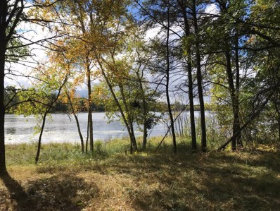 29299 Surfland Road, Mission Twp, MN 56465 - MLS#: 5006928