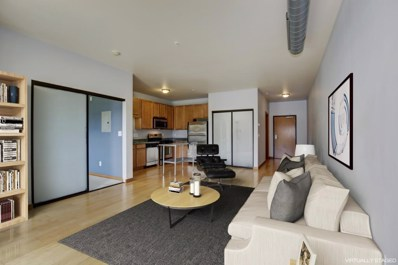 15 E Franklin Avenue UNIT 217, Minneapolis, MN 55404 - MLS#: 5011242