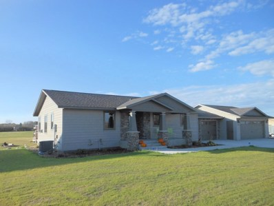 102 Rookery Drive, Cold Spring, MN 56320 - #: 5013909