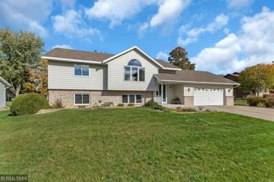 807 Wildflower Lane, Sauk Rapids, MN 56379 - #: 5014129