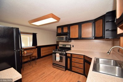 12348 Flintwood Street NW, Coon Rapids, MN 55448 - MLS#: 5014339