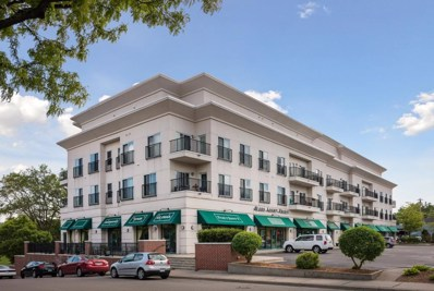 3000 Raleigh Avenue UNIT 303, Saint Louis Park, MN 55416 - MLS#: 5018152