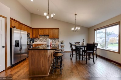 14606 Quicksilver Street NW, Ramsey, MN 55303 - #: 5019113