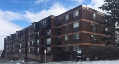 334 Cherokee Avenue UNIT 301, Saint Paul, MN 55107 - MLS#: 5022230