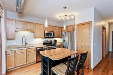 15 E Franklin Avenue UNIT 330, Minneapolis, MN 55404 - MLS#: 5129969