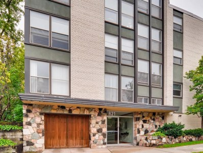 821 Douglas Avenue UNIT 303, Minneapolis, MN 55403 - MLS#: 5137838