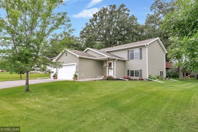 217 17th Avenue SE, Saint Joseph, MN 56374 - #: 5206434
