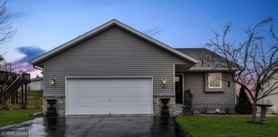 1419 17th Avenue SE, Saint Joseph, MN 56374 - #: 5216180