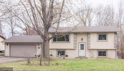 317 Willow Drive SW, Saint Michael, MN 55376 - #: 5223890