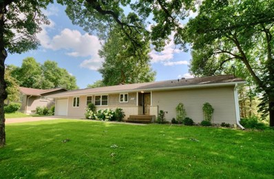 1247 W 6th Street, Red Wing, MN 55066 - #: 5233601