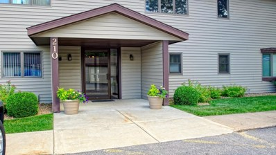 210 Sargent Drive UNIT 205, Red Wing, MN 55066 - MLS#: 5258360