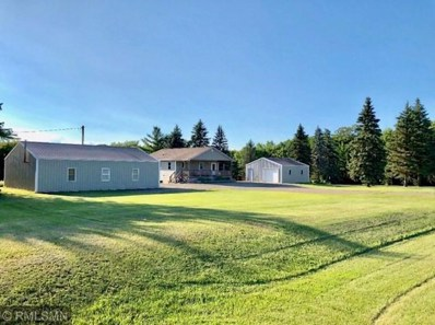 16395 State Hwy 24 NW, Clearwater, MN 55320 - #: 5266123