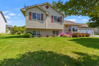 30787 Reed Avenue, Shafer, MN 55074 - #: 5281165