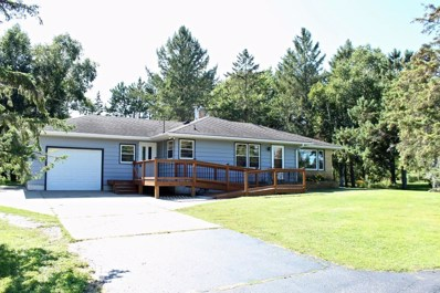 1007 County Road 4, Saint Cloud, MN 56303 - #: 5285574