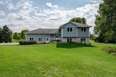 20075 County Road 117, Corcoran, MN 55374 - #: 5290131