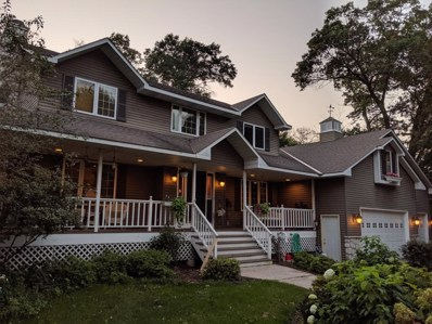 16890 Bison Street NW, Ramsey, MN 55303 - #: 5296960