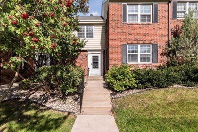 1145 Ivy Hill Drive, Mendota Heights, MN 55118 - #: 5315433