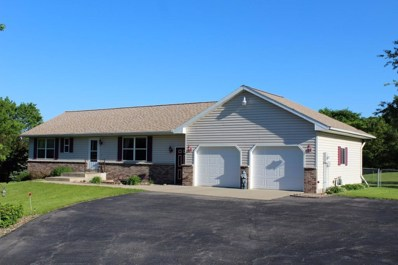 4490 29th Street SE, Marion Twp, MN 55904 - #: 5320246