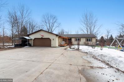 17271 170th Street SE, Big Lake, MN 55309 - #: 5430074