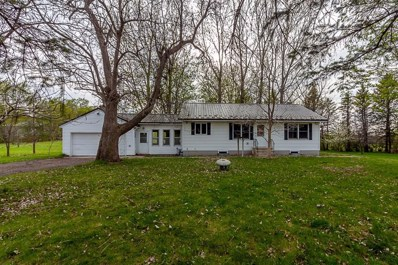 100 N Maple Avenue, Le Center, MN 56057 - #: 5430624