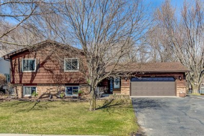 12140 101st Avenue N, Maple Grove, MN 55369 - #: 5546901