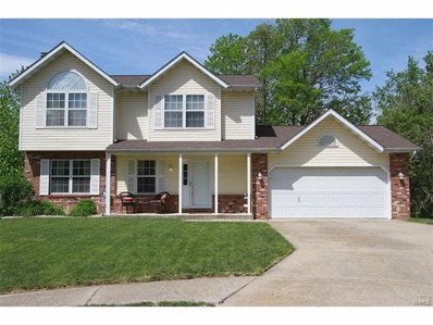 127 Forest Court, Troy, IL 62294 - #: 17033104