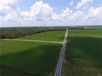 0 Wilhoit Airport Road, Staunton, IL 62088 - MLS#: 17049868