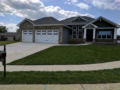 140 Timber Terrace, Troy, IL 62294 - #: 17069402