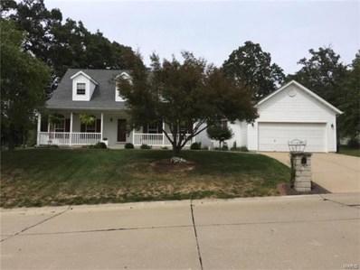 5646 Stone Villa Drive, Smithton, IL 62285 - #: 17070542