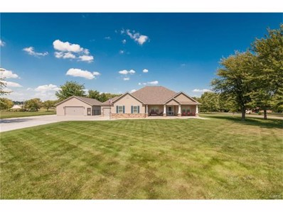8791 Schmalz Road, St Jacob, IL 62281 - #: 17074634